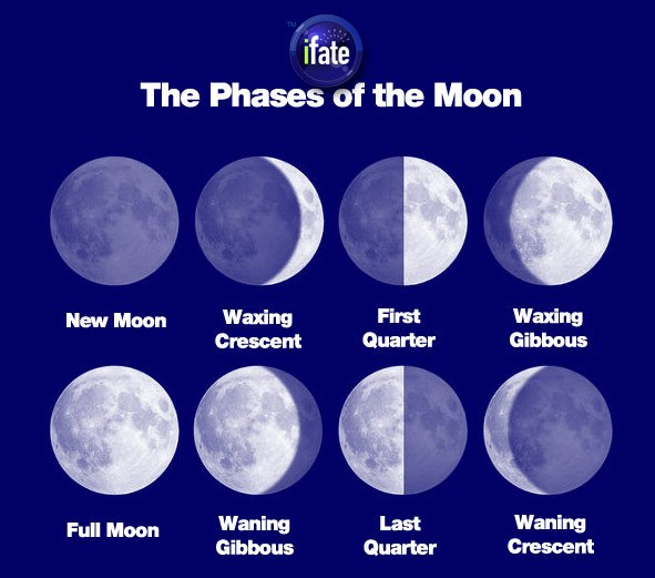 The 8 phases of the moon